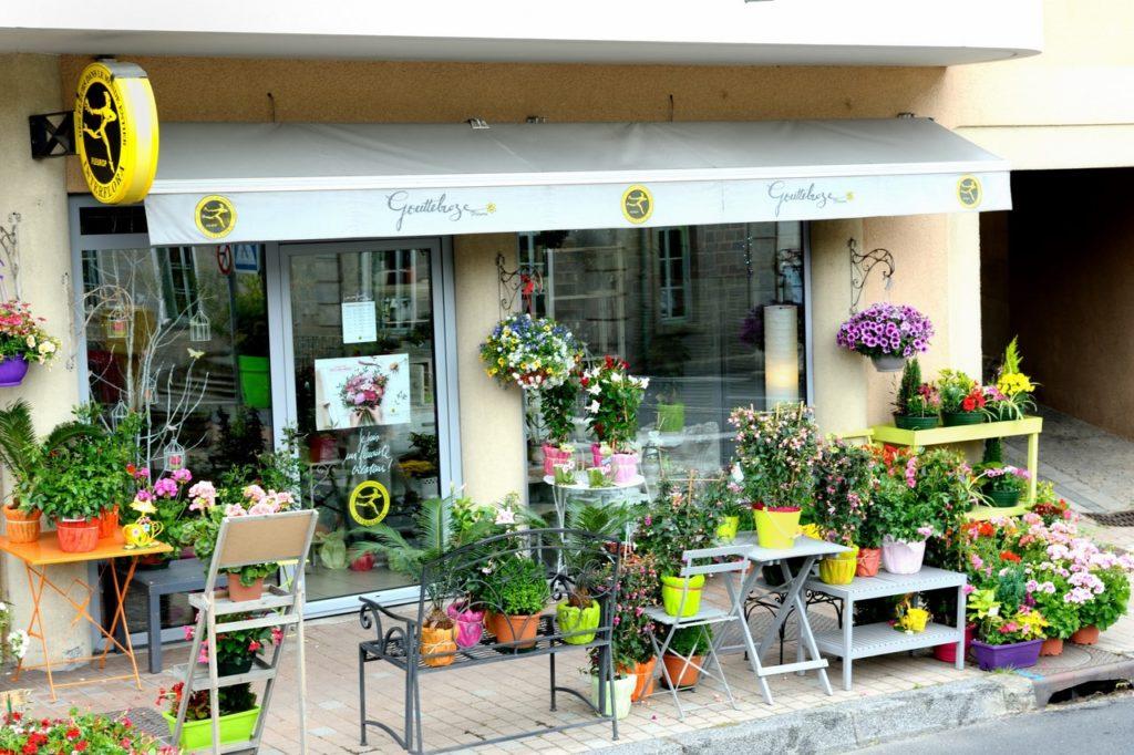 Gouttebroze Fleurs - ACTIF ASTRÉE